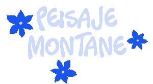Peisaje Montane