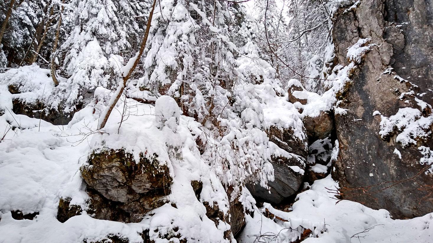 Peisaj de iarna la munte
