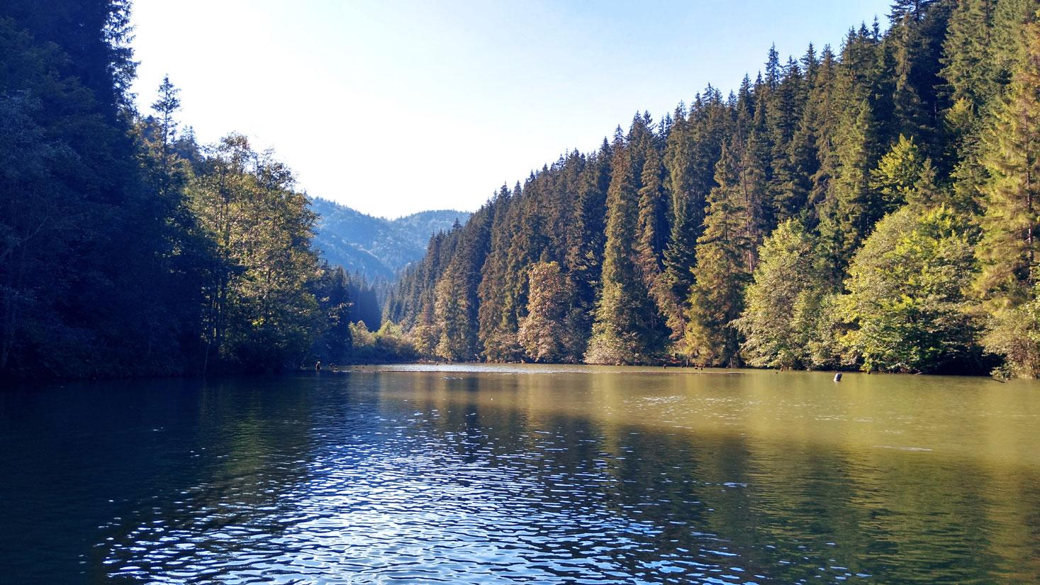 Plutind cu barca pe lac